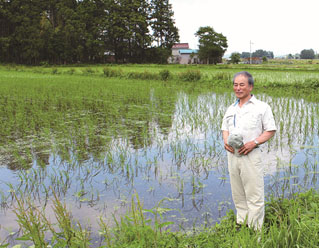 Mr. Haneda very positive in applying EM for his rice paddy