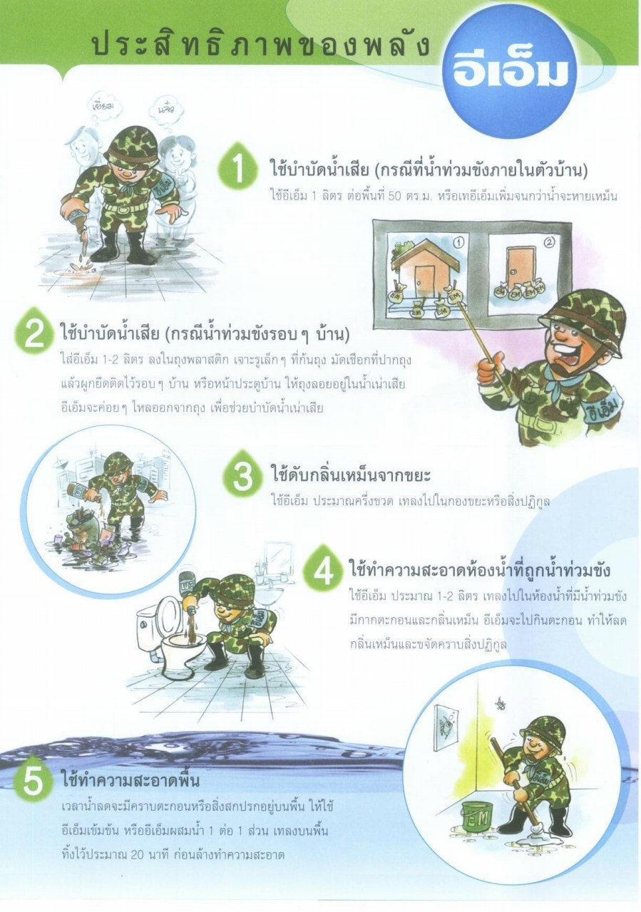 Leaflet explaining how to use EM