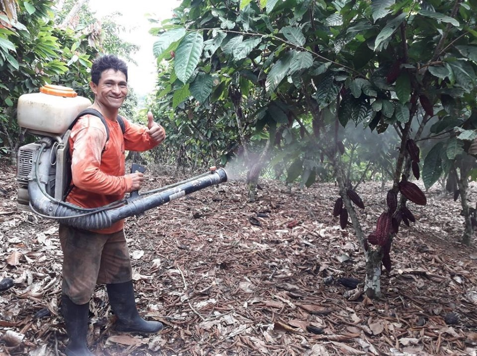Spraying AEM with backpack sprayers