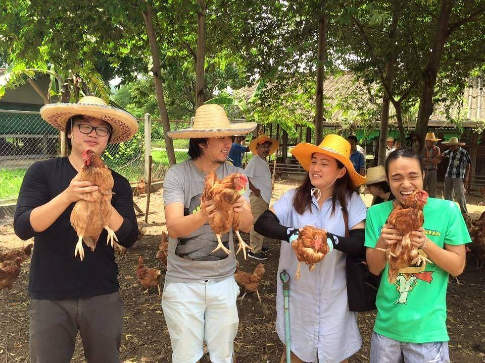 Trainees have the opportunity of feed the chicken directly