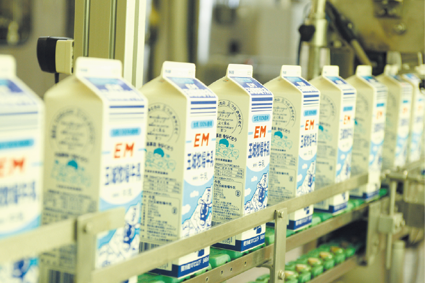 Fresh EM milk being packed