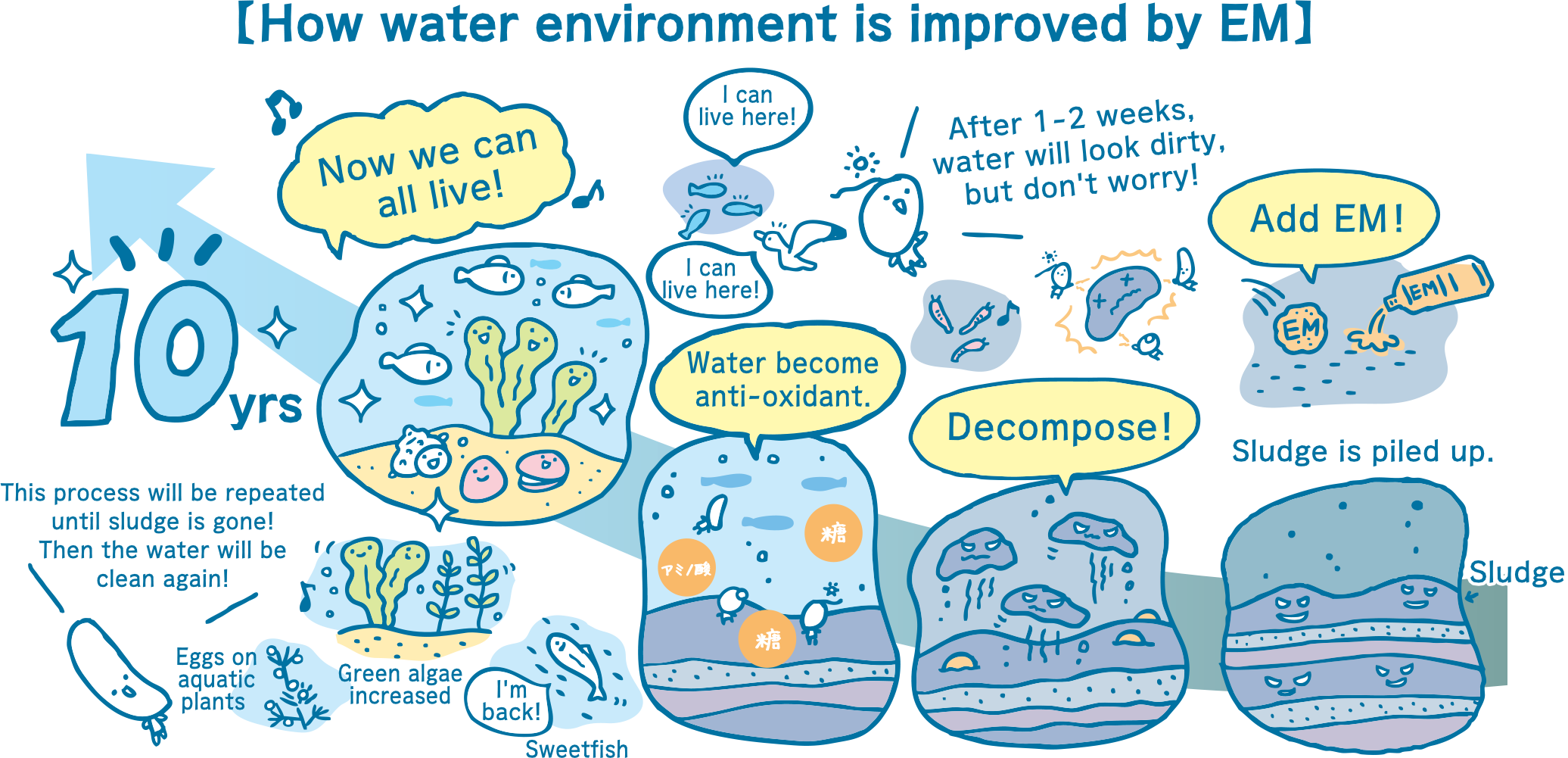 Nihonbashi River water system improvement project | Case