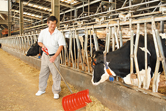 Continuing Dairy Farming in Fukushima, after the earthquake