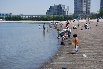 Clamming scene at Odaiba