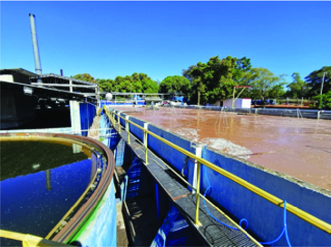 Case Study: Environment-Friendly Waste Water Treatment in Paraguay